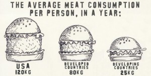 average meat consumption